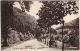 Nuhnetal - Partie Am Wege Zwischen Winterberg Und Hallenberg - Winterberg