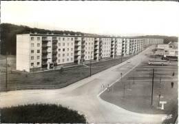 57 - Moselle - BEHREN Les FORBACH - Rue St - Blaise - Dentelée  - Format 10,5  X  15 - Pierron  6381 - Sin Clasificación