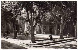 Trets, Place De La Mairie Et Monument Aux Morts - Trets