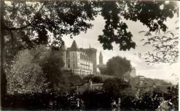 Francia--Pau--Carta Foto-- Le Chateau D'Enri IV Vu Du Parc Nationa - Pau
