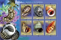 Guyana-SHELLS OF THE CARIBBEAN SHEETLET - Marine Life