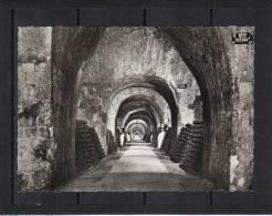 Marne Epernay Champagne Mercier Visite  18 Kms De Caves  , Publistip édition - Epernay