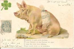 COCHONS - Fantaisie - Schweine