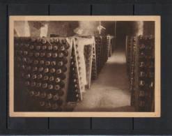 Marne Reims Vigne Vigneron Champagne MUMM, Dans Cellier Le Remuage - Reims