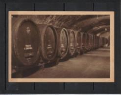 Marne Reims Vigne Vigneron Champagne MUMM, Les Reserves Explication De La Qualité - Reims
