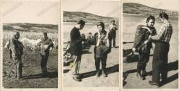 1960s Woman Parachute Training Jumper Paratrooper - Serbia, Yugoslavia - Lot 3 Vintage Old Photo Photos Photographs - Parachutisme