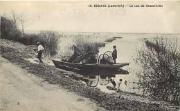 Loire Atlantique -ref A471- Bouaye - Le Lac Du Grand Lieu - Peche -pecheurs   -carte Bon Etat  - - Bouaye