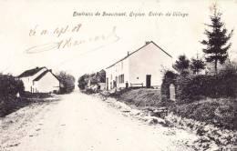 ERPION - Entrée Du Village ( Environs De Beaumont) - Superbe Carte - Froidchapelle