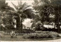 Francia--Hendaye-Plage--CartaPhoto- -Le Jardin Public Et Le Casino---ELCE Nº 10514 - Hendaye