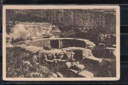 FRANCE 30.CPA.(GARD).NIMES.CASTELLUM DIVISORIUM. NON  CIRCULÉE - Nîmes