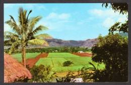FI110) Fiji -  Farms In Penang Valley - Fiji