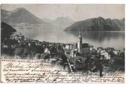 10441    VITZNAU   BUOCHSERHORN - Svizzera