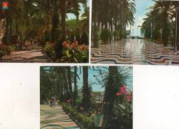 Espagne > ALICANTE - Lot, Ensemble De 3 Cpm Esplanade D´Espagne Et Jardins * PRIX FIXE - Alicante