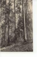 Devin De Vaulruz 1919 - FR Fribourg