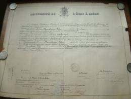Université De L´état à Liège / Faculté De Medecine - Certificat De BONNELANCE Félix / Anno 1902 ( Details Zie Foto ) ! - Diplômes & Bulletins Scolaires
