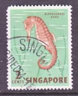 Singapore 53  (o)  FAUNA  MARINE  LIFE  SEAHORSE - Singapore (1959-...)