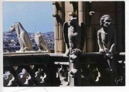 Paris Et Ses Merveilles - Notre Dame - Gargouilles Chimere - Oiseaux Et Monstres (cp Vierge N°5560 Guy) - Notre Dame De Paris