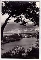 EUROPE SLOVENIA BLED PANORAMA BIG POSTCARD 1965. - Slovenia