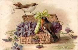 CPA - Oiseaux Autour D'une Boite Fleurie - Birds