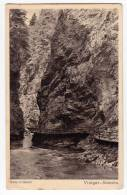 EUROPE SLOVENIA WATERFAL VINTGAR SOTESKA AT BLED FOTO C. KUNC OLD POSTCARD - Slovenia