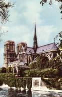 Kathedrale - Notre-Dame De Paris