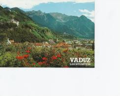 Liechtenstein   Vaduz  A-483 - Liechtenstein