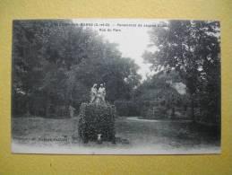 VILLIERS SUR MARNE. Le Parc Du Pensionnat De Jeunes Filles. - Villiers Sur Marne
