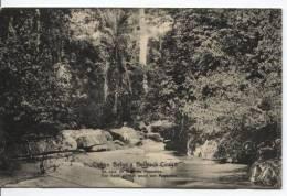 Belgisch Congo Belge CP Vue 9 Entier 5c C.Bukania 1914 AP322 - Entiers Postaux