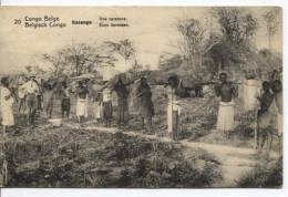 Belgisch Congo Belge CP Vue 20 Entier 5c C.Basankusu 1914 1 TP Manquant  AP326 - Entiers Postaux