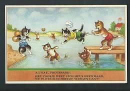 """Chats En Maillot De Bain. """" A L'eau, Froussards!"""" - Katten"""