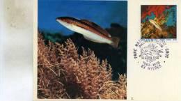 Carte  Premier  Jour D´emission ( Parc National De Port-Cros A Hyeres  83 Le 15-04-1978 - Dia Del Sello