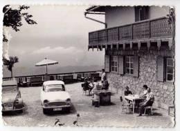EUROPE SLOVENIA SECNICA LIPCA BIG POSTCARD 1963. - Slovenia