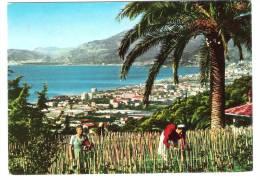 Italy - BORDIGHERA - PANORAMA DA LEVANTE - RIVIERA DEI  FIORI - 1964 - Imperia