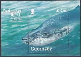 (12563).Guernesey 2011.  Espèces En Danger : La Baleine Bleue **. - Guernesey