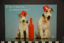 CP, Animaux, Chiens, En Vacances, Chien Terrier  L'on A Bien Bu... Je Pense A Vous N°140 L Chatagneau - Chiens