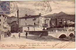 CARRARA Ponte Nuovo Alla Lugnola Usata 25cent. Floreale  Per Argentina RRR 27.11.1901 - Carrara