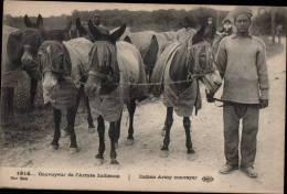 CONVOYEUR DE L´ARMEE INDIENNE - Guerre 1914-18