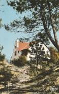 "Dép. 62 - STELLA PLAGE.- Villa ""La Pie Qui Chante"". F. Gambier. N° 441 - France"
