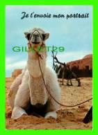 CHAMEAUX, CAMELS, DROMADAIRES -  JE T'ENVOIE MON PORTRAIT - CIRCULÉE EN 1985 - - Cartes Postales