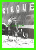 CHAMEAUX, CAMELS, DROMADAIRES - A VALENCE D'AGEN, CIRQUE, UN DROMADAIRE RÊVEUR - TIRAGE LIMITÉ À 100 Ex EN 1993  - - Cartes Postales