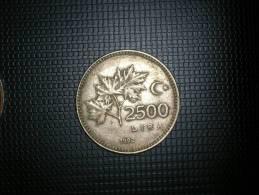 Turquia 2500  Lira 1992(4808) - Turquia
