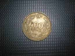 Turquia 100 Lira 1991 (4824) - Turquia