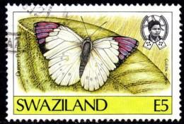 Swaziland - 1987 Butterflies E5 (o) # SG 527 , Mi 526 - Schmetterlinge