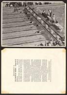Berlin OLYMPIA 1936 Bild 91 - Gruppe 59, Swimming       #6840 - Trading Cards
