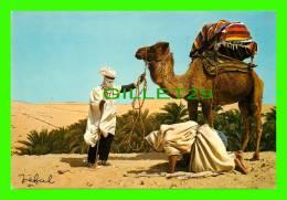 CHAMEAUX, CAMELS, DROMADAIRES -  ALGÉRIE PITTORESQUE - - Cartes Postales