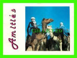 CHAMEAUX, CAMELS, DROMADAIRES -  AMITIÉS - ÉCRITE - - Cartes Postales