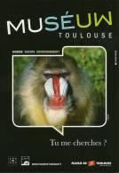 31 - TOULOUSE Muséum - Musées