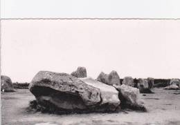56 CARNAC - Dolmen - Alignement De Kermario - Carnac