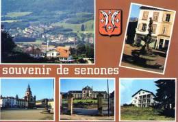 Souvenir De SENONES - Multivues - Blason - Senones