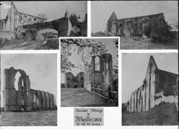 PN 048 - VENDEE - MAILLEZAIS - Multivues Ancienne Abbaye - Plaques De Verre